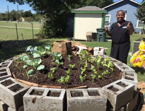 Partnering with Brazos County Master Gardeners